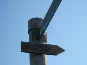 El cartell ens indica que el camí cap a Coll Pregon és el de la dreta!