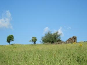 A mesura que anem pujant, el paisatge canvia. Si estem al cas, en arribar a un prat, a mà esquerra hi ha encara les runes del Casal d'en Quelet, una antiga construcció per als estris del camp i del bestiar.
