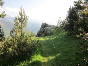 El caminet que travessa el bosc ens porta a un mirador inesperat amb bones vistes.