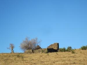 Passem pel costat de les runes de Can Calet i seguim amunt, vorejant el camp.