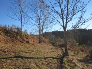 La pujada a Coll Pregon durant l'hivern és molt més clara que a l'estiu!!