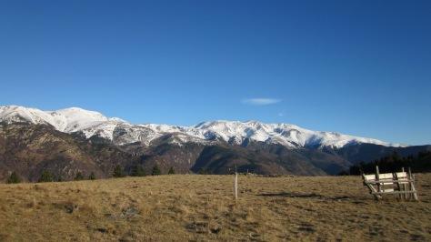 Vistes del Massís del Canigó des de Coll Pregon