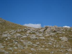 A mà esquerra comença el camí cap a Roca Colom entre les pedres. Alguns senyals groc reflectants ens ajuden a trobar-lo i, de més a prop, també en trobem de GR.