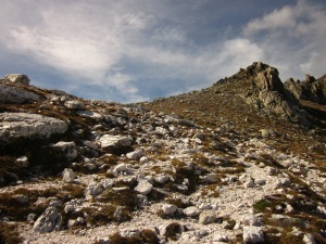Sobre una pedra ben blanca, element bàsic de la veta que forma les Esquerdes de Rojà, emprenem el camí cap a la Portella.
