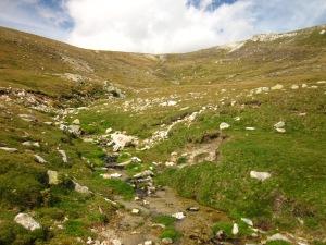 Les aigües clares del Tec neixen de les entranyes del Roca Colom. Germà del nostre riu Ter, ens explica que la carena que tenim al davant és la divisòria d'aigües.