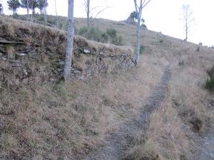 A peu del mur neix un corriol que puja amunt, gairebé en direcció contrària al camí del que venim.