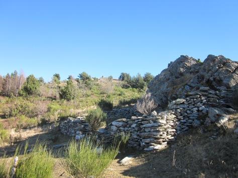 Des del nostre corriol, veiem un petit tancat de pedra on s'hi solien tancar vaques o ovelles. Al cim, talaiant, el pedró. M'encanta l'arquitectra rural i pagesa!!
