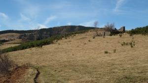 Passem per davant del Casal d'en Quelet, que talaia, des de fa dècades, el camp i el ramat.