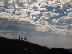 Avui els núvols han jugat amb nosaltres. Ja durant la pujada ens amenaçaven!