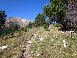 El camí puja dret amunt pel serrat.