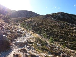 El nostre camí s'enfila amunt, guanyant alçada camí de Coll de Pal.