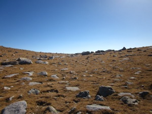 Progressem en la pujada per acostar-nos al punt més alt de la ruta: el Coll de Pal.
