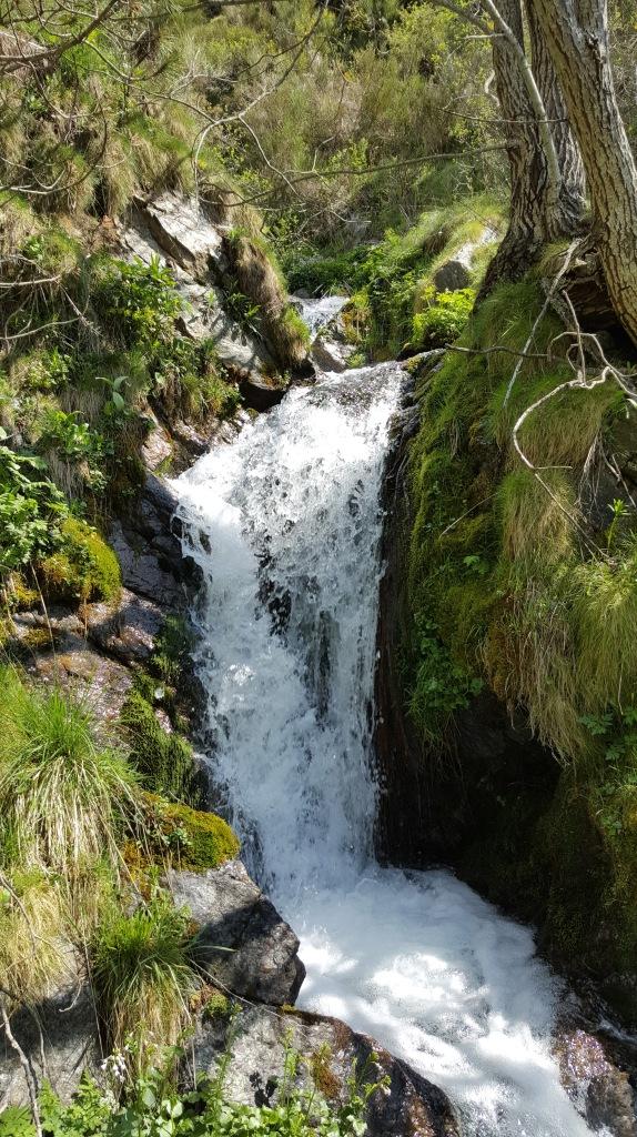La força de les aigües eixint de la terra!!