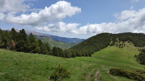 Coll de Siern i Canigó